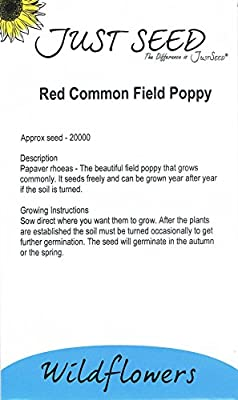 JustSeed - Wild Flower - Red Common Field (Flanders) Poppy - Papaver rhoeas - 20000 Seed : everything 5 pounds (or less!)