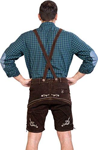 Almwerk Herren Trachten Lederhose kurz Platzhirsch in verschiedenen Farben, Farbe:Braun;Lederhose Größe Herren:46 - 5