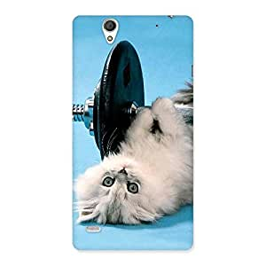 Stylish Fit Cat Multicolor Back Case Cover for Sony Xperia C4