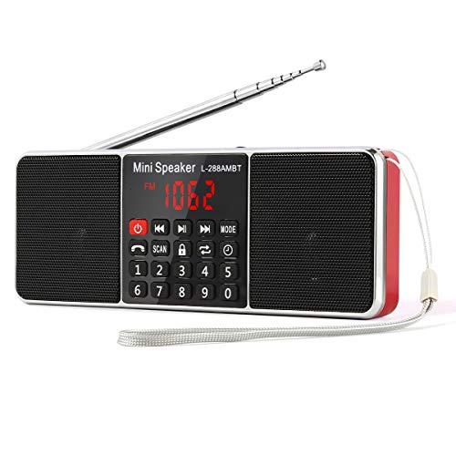 PRUNUS L-288 Portable AM/FM/Bluetooth/mp3/USB/SD/AUX Radio de Antena Larga con Altavoz magnético Doble, función de Temporizador de Apagado automático. Almacena Estaciones automáticamente.