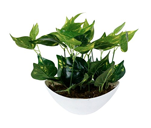 207 & Pindia Artificial Money Plant Tree Green Flowers with Pot