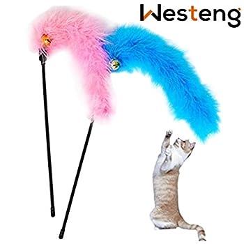 Westeng 2 pcs plumes Jouet à Plume Artificiel en Tige courte Funny pour Chat (Couleur aléatoire)