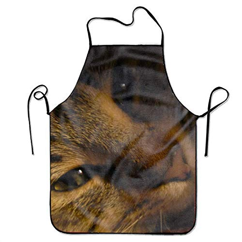 Men Aprons Adult Animal Lynx Cats Cooking Gift Kitchen BBQ Size 72CM x 52CM - Lynx Outdoor-küchen