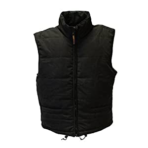 41zYd1jlODL. SS300  - Warmawear Men's Battery Heated Waistcoat Jacket with Collar (S/M) Black