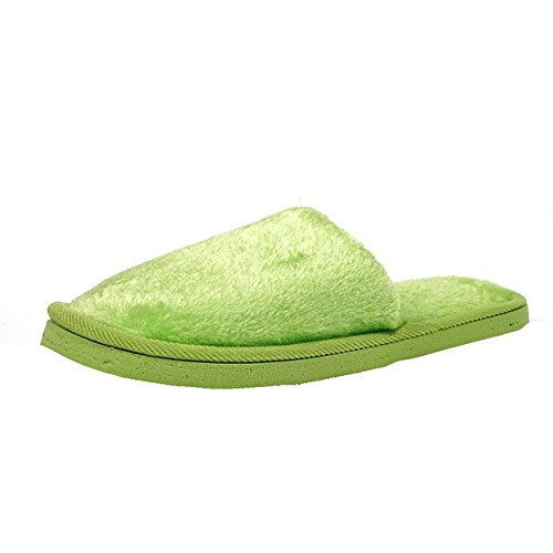 LEPAKSHI e, 7.5 : Senza Fretta Women Shoes Warm Slippers Home Velvet Slippers Pure Color Plush Cotton Slippers Indoor Soft Women Autumn Soft Shoes
