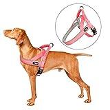 PETTOM Pettorina Cane Confortevole Morbida Dog Harness per Cani Piccolo Media Grande Riflettente Regolabile con Manico Bungee per Passeggio Addestramento Viaggio Facile da Indossare (Rosa, M)