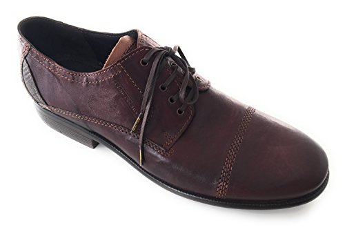 Active Oxford Uomo Marrone Camel Oxford qfAXwfa