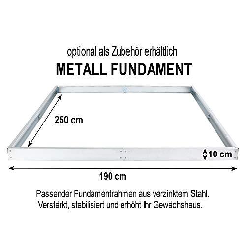 Zelsius – Aluminium Gewächshaus, Garten Treibhaus in verschiedenen Größen, mit Hohlkammerstegplatten, wahlweise mit Stahl-Fundament-Rahmen (190 x 250 cm – 4 mm Platten, ohne Fundament)