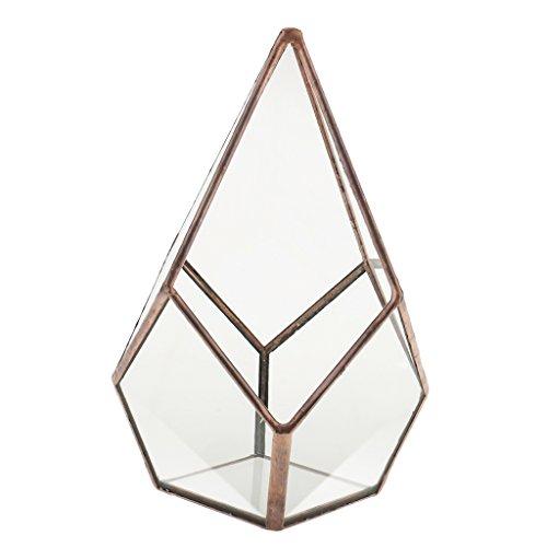 Luft Pflanzer Mini Glas Terrarium Geometrisches Glas Sukkulente Pflanzen Pflanzgefäß Deko 16x16x25cm - Kupfer -