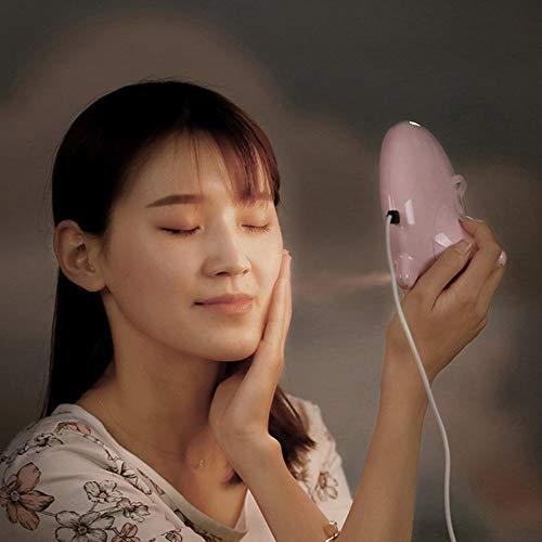 LIULINUIJ Beauty Mirror Light Ion Nano Humidifier Water Meter Steaming Machine WomenMirrors Night Lights Womens Nano