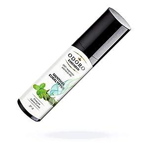 Saunaaufguss Duft Menthol Eukalyptus Minze – 100% ätherische Öle – Premium Aufguss Konzentrat (100ml) – Natürliches Aufgussmittel, naturrein, naturreine Saunaaufgüsse