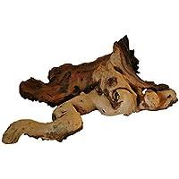 Lucky Reptile mw-m Mopani madera, tamaño mediano