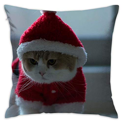 Icndpshorts Santa Claus Cute Cat Pillowcase - Zippered Pillow Case Cover, Pillow Protector, Throw Pillow Cover - Standard Size 18x18 Inch, Double-Sided Print Pillowcase Covers