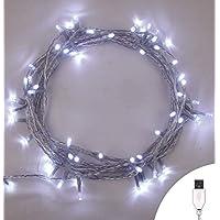 Luces de hadas USB 100 LED Blanco brillante Luces de la cadena de Navidad para interiores Estable Encendido/apagado USB alimentado 10m/32 pies de largo iluminado con cable transparente