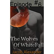 Episode 6: The Wolves Of WhiteFall (English Edition)