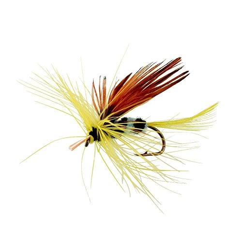 Forfar Fliegenfischen Haken 12st Butterfly Style Einzelhaken Fliegen-Fischen-Fisch-Köder-Gerät Forelle Lachsfliegen Fly Set-Gerät (Fisch Butterfly)