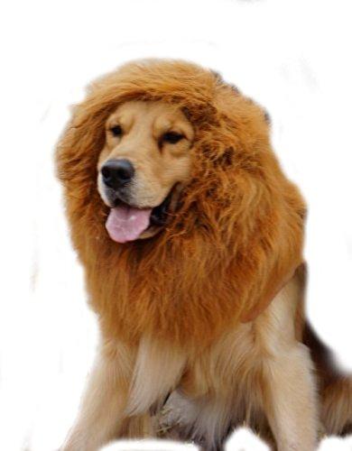 Löwenmähne für Hunde, Dogloveit Kostüm Löwe mit Geschenk [Schwanz] Löwe Perücke für Hunde (Einzigartig Hund Halloween Kostüme)