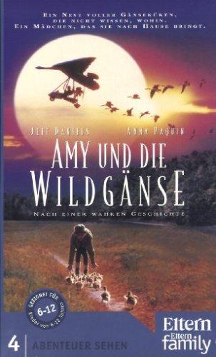 Abenteuer Sehen - Amy und die Wildgänse