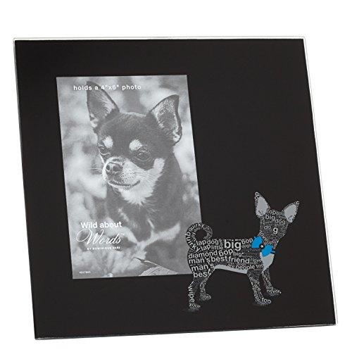 Enesco-Wild-About-Words-Cornice-Chihuahua-N-Vetro-Multicolore