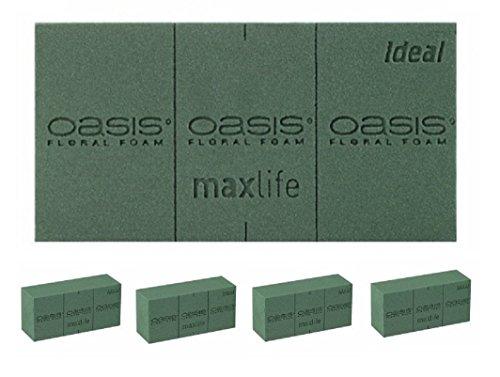 4 x OASIS® IDEAL Frischblumen Steckschaum, Steckziegel, Steckmasse