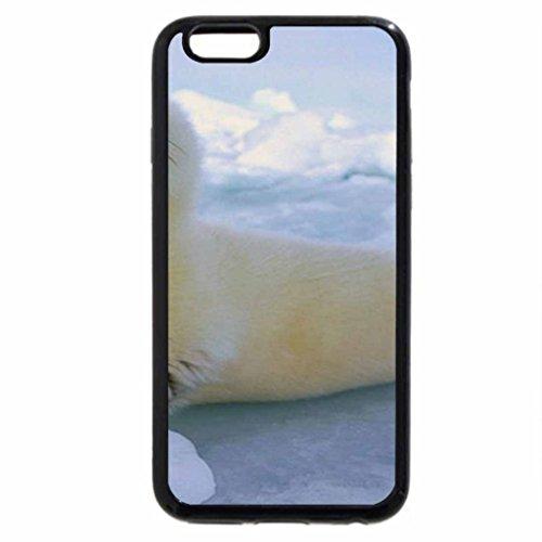 iPhone 6S / iPhone 6 Case (Black) Baby Harp - Seal Baby Harp