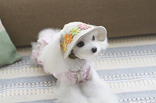Sharplace Hunde Hut Mütze Cap Kappe mit Ohr Löcher für Kleine Hunde Haustiere Zubehör