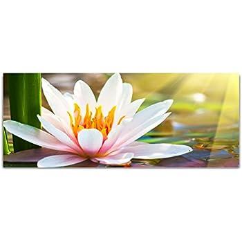"""Glasbild /""""Blumen/"""" von DEKOGLAS 125x50 aus Acrylglas Wohnzimmer Wand Glas Bild"""
