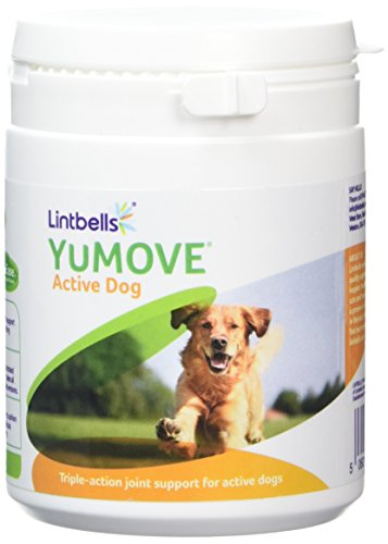 Lintbells YuMOVE Active Dog Joint Supplements (240 tablets)