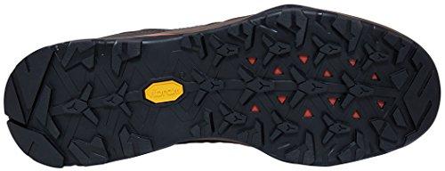 The North Face Hedgehog Hike Gore-Tex, Chaussures de Randonnée Basses Homme Marron (Brown/tibetan Orange)