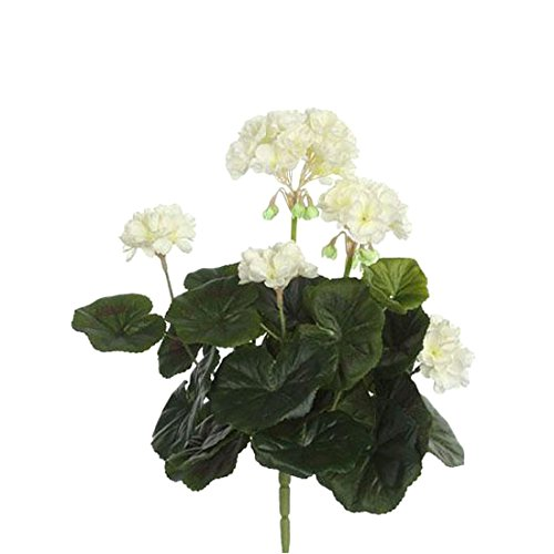 MICA Decorations 975261 Blumen, Geranium großen, beige