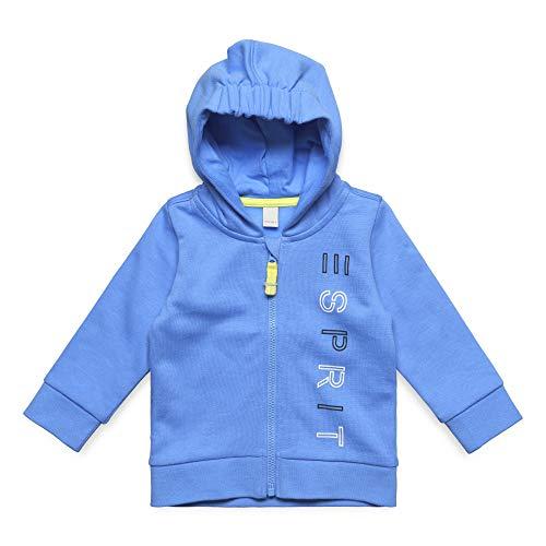 ESPRIT KIDS Baby - Jungen Sweatshirt Card Sweatshirt, per Pack Blau (Azur Blue 443), 74 (Herstellergröße: 74)