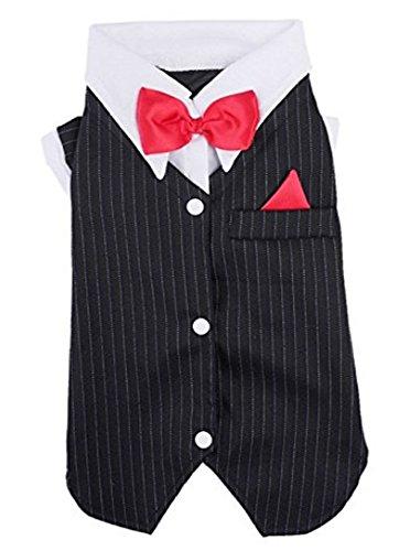 nobrand Haustiere Welpe Hund Kleider Hund Anzug Kleider Schwalbenschwanz Anzug Bowknot Hochzeit Bekleidung Jacke Shirts Hochzeit Bräutigam Hunde (M)
