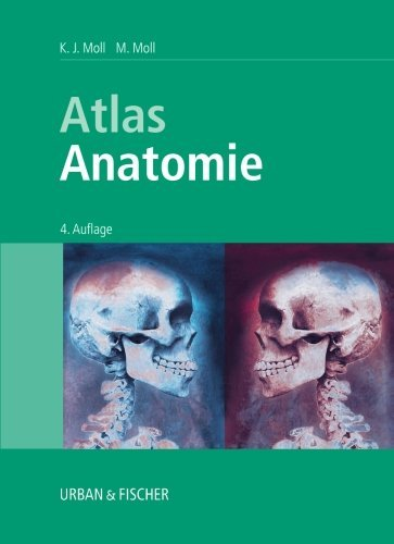 Atlas Anatomie (Volume 4) (German Edition) by K. J. Moll (2003-11-13)