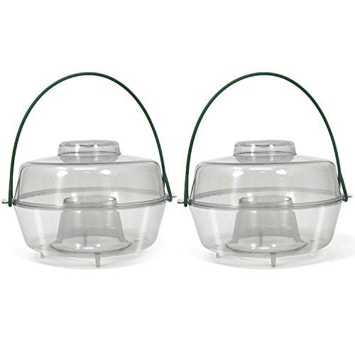 com-four 2X Trampa de Insectos de plástico para Colgar, Avispas, Moscas y Trampa para Avispas para Uso en Exteriores (02 Piezas - Transparente 10 cm)