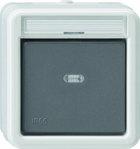 Gira 011631 Wippschalter Kontroll Wechsel WD Aufputz, grau