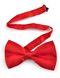Mens plaine noeud papillon en satin (Rouge (Red))