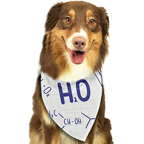 Rghkjlp Science Pet Bandana Washable Reversible Triangle Bibs Scarf - Kerchief for Small/Medium/Large Dogs & ()