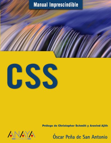 Libro CSS