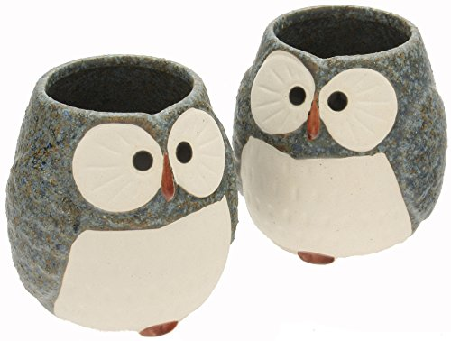 Kotobuki Ceramic Owl Cup (Set of 2), Blue by Kotobuki - Kotobuki-cup