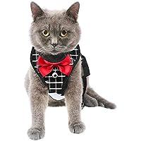Arnés para Gato y Correa a Prueba de Escape, arnés de Malla Tipo Chaleco, Ajustable y Suave para pasear al Gato, para Gatos pequeños medianos Grandes Mascotas Gatito Cachorro Conejo