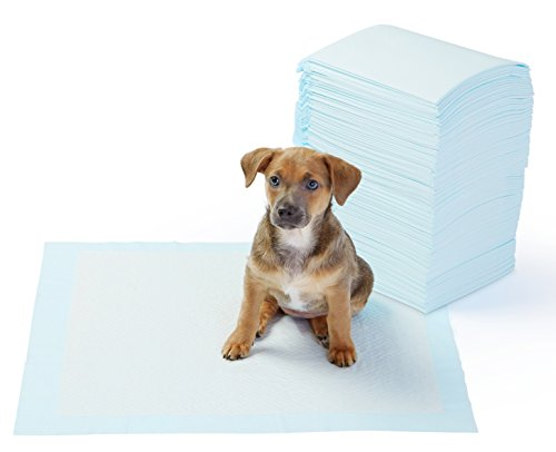 AmazonBasics-Pet-Training-Pads-Regular-X-Count