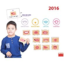 Akros Akros20020 Logo-Bits Card for Oral Motor Speech Therapy