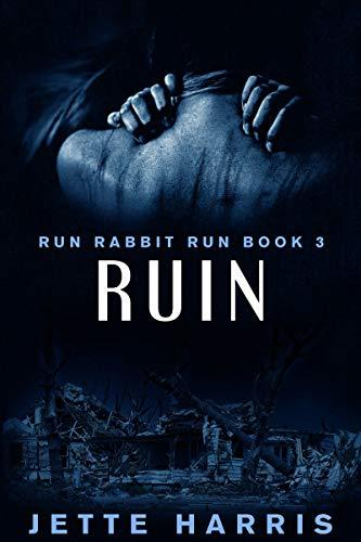 RUIN: a serial killer thriller (Run Rabbit Run Book 3) (English Edition) (Killer-fiction Serial)