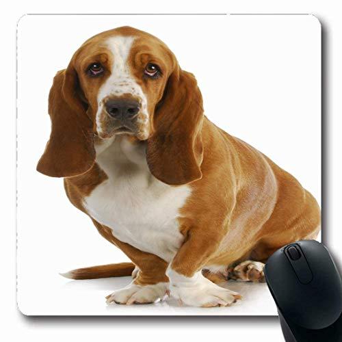 Luancrop Mousepads for Computers View Brown Entzückender Basset Hound, der Haustier-Projektor-Tier-Hunderasse-Weiß-Entwurfs-Säugetier-rutschfeste längliche Spiel-Mausunterlage schaut -