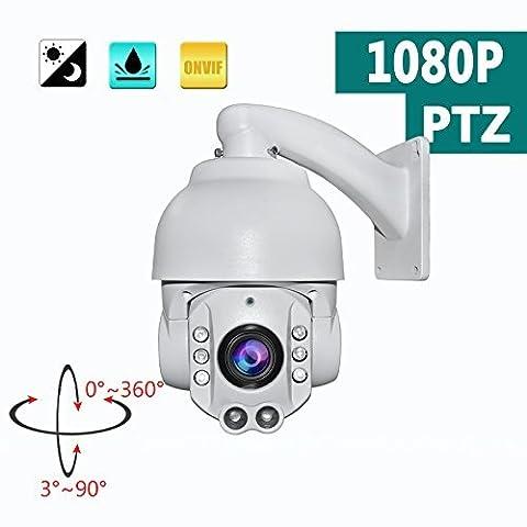 SW 1080P 20X Optical Zoom HD IP PTZ Dome Camera