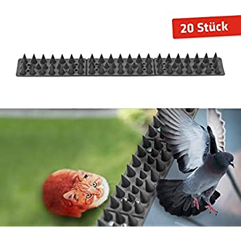 3m Pics Anti Oiseaux Et Anti Chats 6 Pcs De 50cm