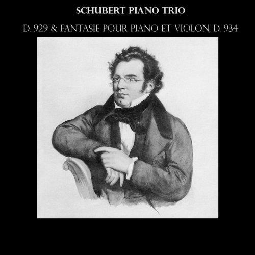 piano-trio-in-e-falt-major-d-929-ii-andante-con-moto