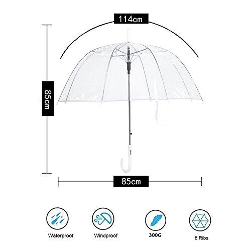 Regenschirm, Hochzeitsschirm | Transparent - 3