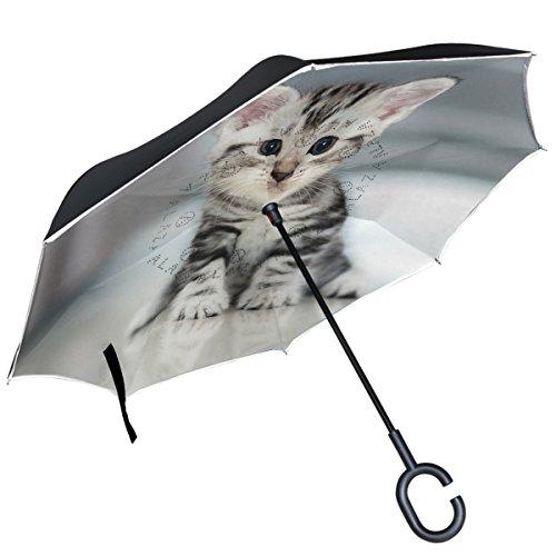 ALAZA - Paraguas inverso de Doble Capa Resistente al Viento, diseño de Gato