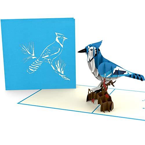 Blauhäher, blauer Vogel, diverse Anlässe, Geburtstagskarte, Glückwunschkarte, Grußkarte als Dankeschön, originelle Geschenk-Karte, Danksagungskarten, Alles Gute Dankeskarten ()